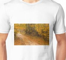 Autumn colors in a path within the woods. Unisex T-Shirt