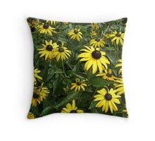 Black-Eyed Susan Wildflowers - Rudbeckia hirta Throw Pillow