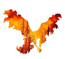 Moltres used heat wave Photographic Print