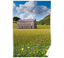 Barns and Meadows Poster