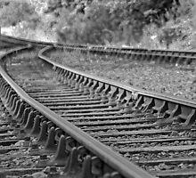 Tracks by wildone