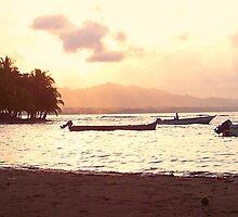 Where I want to retire - Costa Rica by Michelle Hamilton