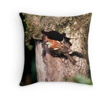 Russet Sparrow or Eurasian Wood Sparrow? Throw Pillow