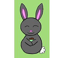 Bunny loves cupcakes Photographic Print