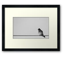 Bird On The Wire Framed Print