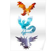 The legendary trio (birds) Poster