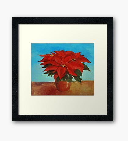 Christmas plant Framed Print
