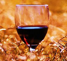 A Drop Of Red by Liza Barlow