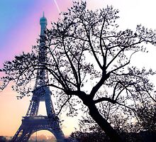 sunset at the Tour Eiffel by faithie