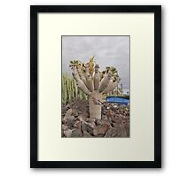 Tree with Hands or heads Framed Print