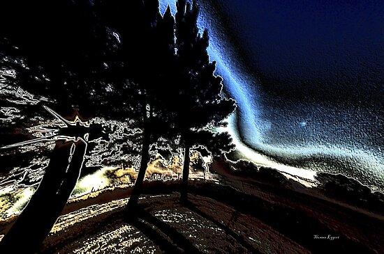 Morning Abstract by Thomas Eggert