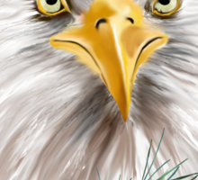 Eagle In The Pines Sticker