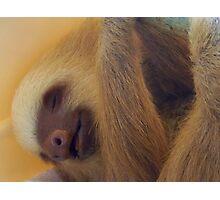 I sleep just like that Photographic Print