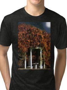 Autumn's Temple Tri-blend T-Shirt