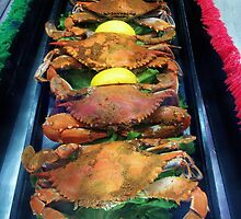Hot Steamed Maryland Crabs by Paulette1021