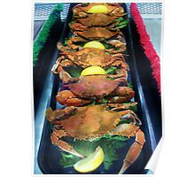 Hot Steamed Maryland Crabs Poster