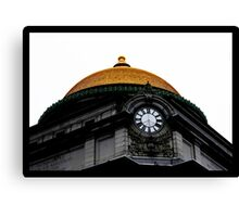 Time To Be Brainwashed Canvas Print