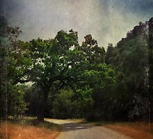Another Bend In The Road by Laurie Search