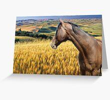 Horsey Love Greeting Card