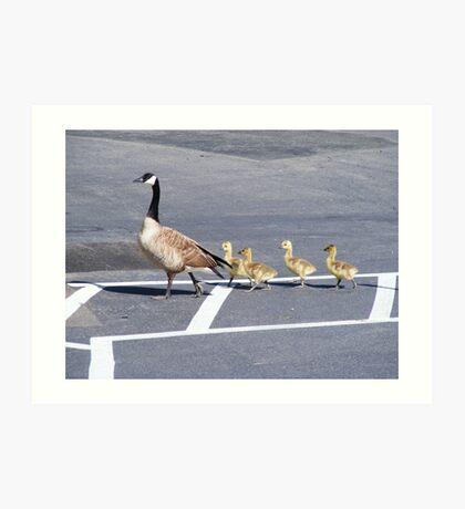 The Goose Lead Art Print