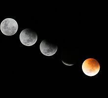 Total Lunar Eclipse by Anthony Caffery