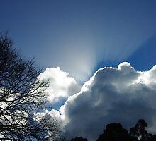 Olinda Sky by Alison Murphy