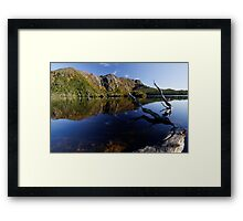 Blue Dove Morn Framed Print