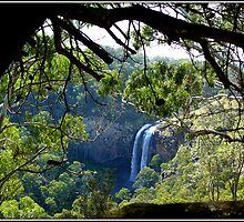 Lower Ebor Falls    --- NSW  Australia by shortshooter-Al