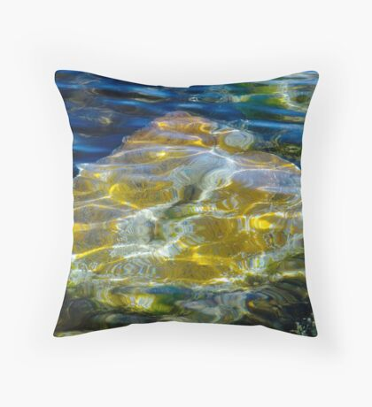 Just Below the Surface Throw Pillow