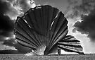 Aldeburgh Scallop. Shell Sculpture. by Darren Burroughs
