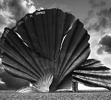 Aldeburgh Scallop. Shell Sculpture. by Darren Burroughs