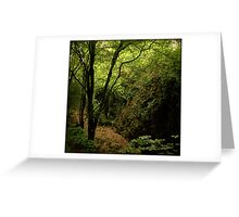 Forty shades of green - Glengarriff Woods Nature Reserve Greeting Card