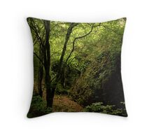 Forty shades of green - Glengarriff Woods Nature Reserve Throw Pillow