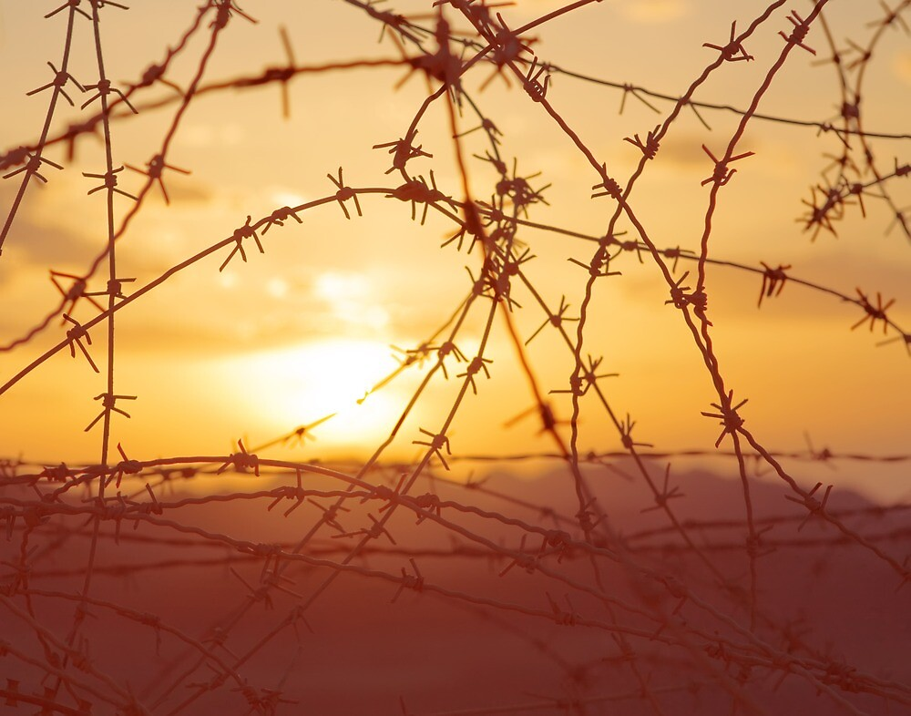 Bloody sunset at the Israel-Egypt border by paralingua