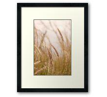 Simply Grass © Vicki Ferrari Photography Framed Print