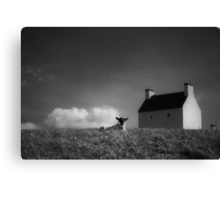 silence of the lamb Canvas Print