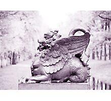 Gryphon statue  Photographic Print