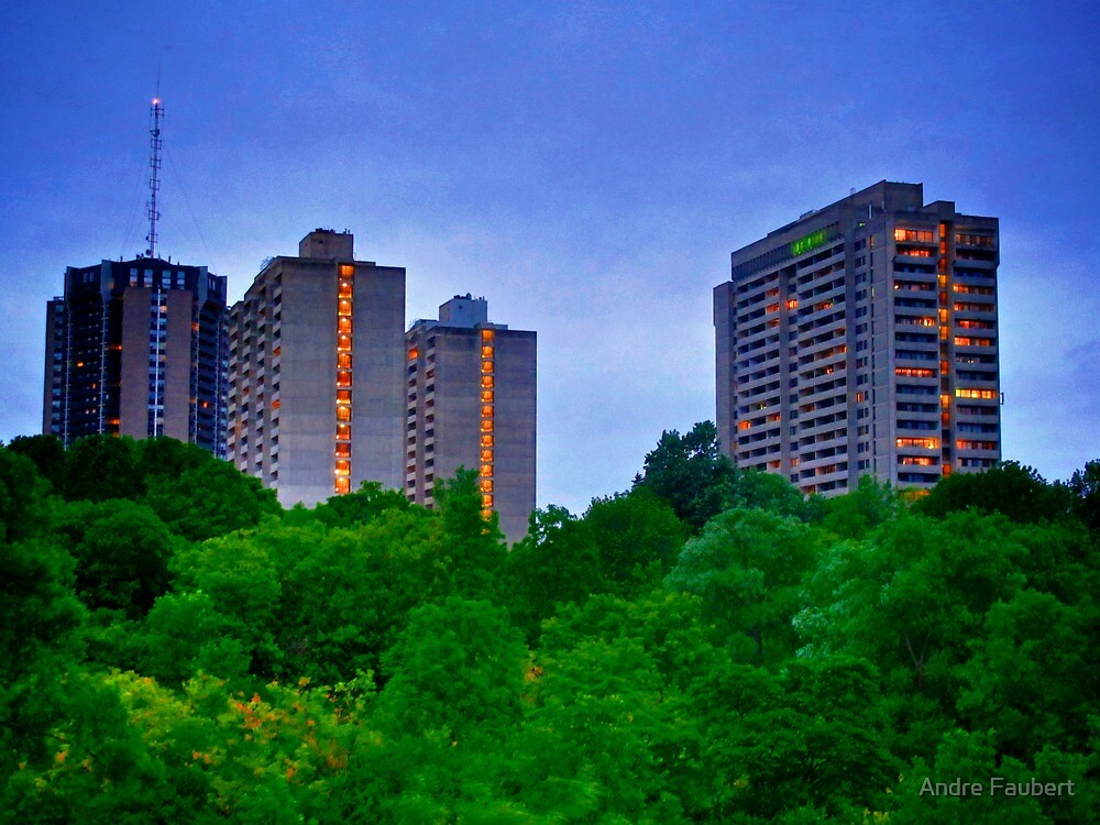 Urban jungle by Andre Faubert