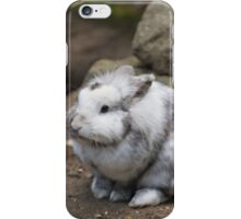 rabbit in the forest iPhone Case/Skin