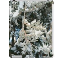 Branches of fir trees iPad Case/Skin