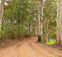 Karri Roadway by pennyswork