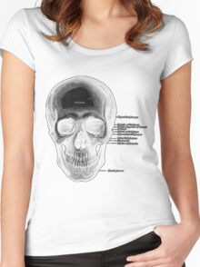 anatomy Skull Women's Fitted Scoop T-Shirt