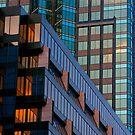 Glass Complex by Elisabeth van Eyken