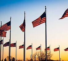 Circle of Flags by Inge Johnsson