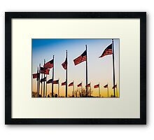 Circle of Flags Framed Print