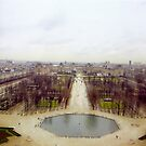 Paris View by Alberto  DeJesus