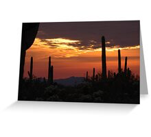 Saguaro sunset collection #11 Greeting Card