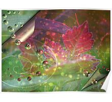 Leaves of Summer Poster