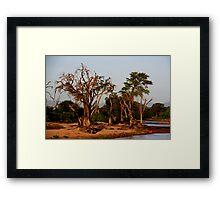 Out of Africa - Samburu Framed Print