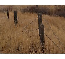 """""""Old Barbed Wire Fence Line"""" Photographic Print"""